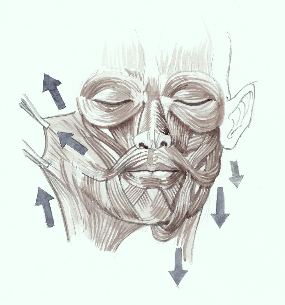Ansigtsløftning løfter og strammer de slappe ansigtsmuskler